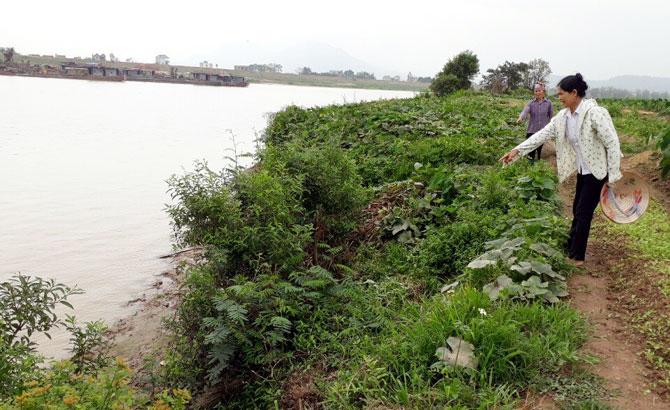 Yêu cầu HTX Khai thác kinh doanh vật liệu xây dựng Yên Sơn dừng khai thác cát sỏi